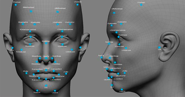 3D modelled face with labelled points of identification